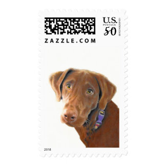 Chocolate Lab first class stamp, dog postage