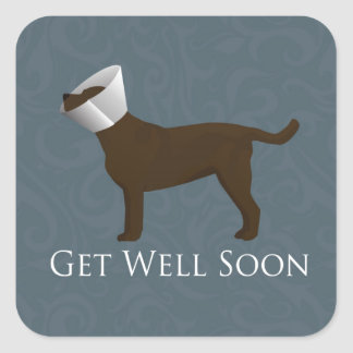 Chocolate Lab Get Well Soon Design Square Stickers