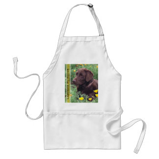 Chocolate Lab in California Poppy Patch Adult Apron