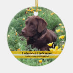 Chocolate Lab in California Poppy Patch Christmas Tree Ornament