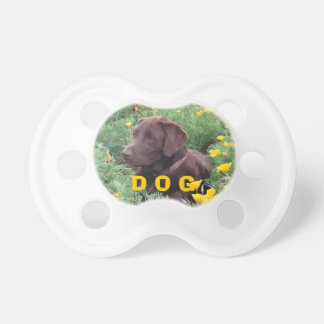 Chocolate Lab in California Poppy Patch Pacifier