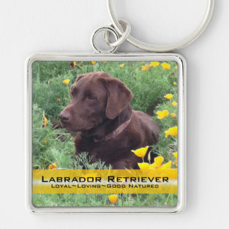 Chocolate Lab in California Poppy Patch Silver-Colored Square Keychain