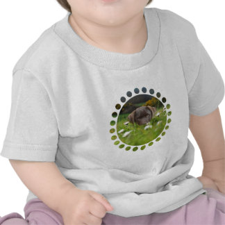 Chocolate Lab in Daisies Baby T-Shirt