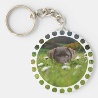 Chocolate Lab in Daisies Keychain