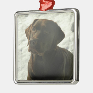 Chocolate Lab in The Snow Christmas Tree Ornaments