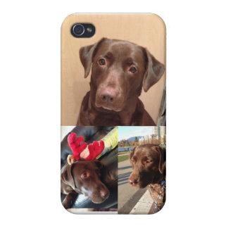 Chocolate Lab iPhone Case 2