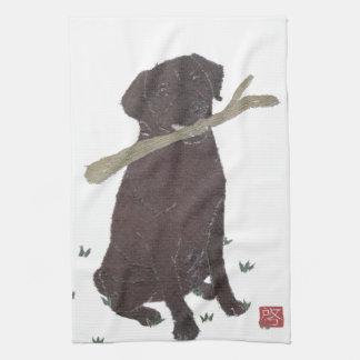 Chocolate Lab, Labrador Retriever, Brown Towel
