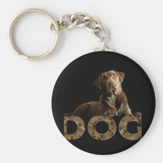 Chocolate Lab Laying Lounging on the word DOG Keychain