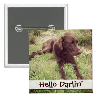 Chocolate Lab Lying In Grass Photograph Pinback Button
