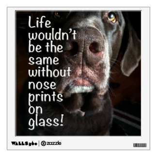 Chocolate Lab Nose Close Up Photograph Wall Decals