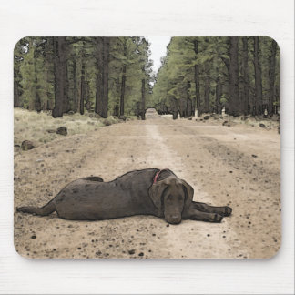 Chocolate Lab On A Forest Trail Mouse Pad