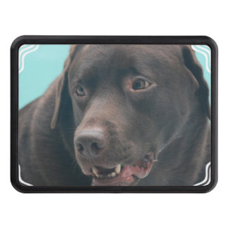 Chocolate Lab Tow Hitch Covers