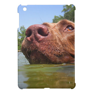 Chocolate Lab Pit Dog Swimming 9 Case For The iPad Mini