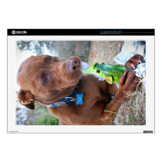 Chocolate Lab Pit Mix Dog and Toy Laptop Decal