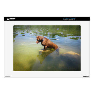 "Chocolate Lab Pit Mix Dog Fishing 4 Decal For 15"" Laptop"