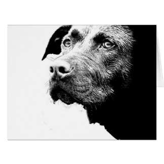 Chocolate Lab Pit Mix Dog in Black and White Card
