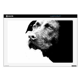 Chocolate Lab Pit Mix Dog in Black and White Laptop Decals