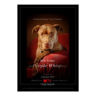 Chocolate Lab Pit Mix Dog Movie Poster