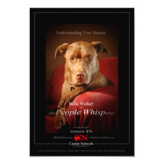 Chocolate Lab Pit Mix Dog Movie Poster Photo Print