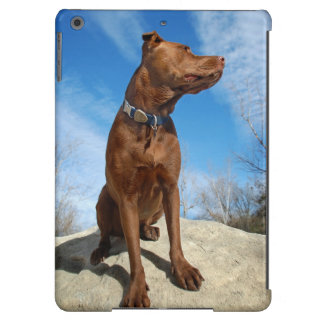 Chocolate Lab Pit Mix Dog Portrait 6 iPad Air Cover