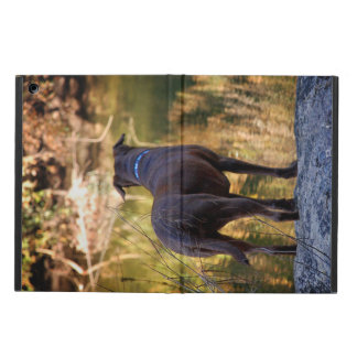 Chocolate Lab Pit Mix Dog Serene Cover For iPad Air