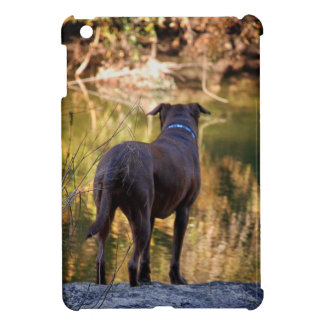 Chocolate Lab Pit Mix Dog Serene Cover For The iPad Mini