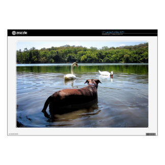 """Chocolate Lab Pit Mix Dog Swimming With Swans Decal For 17"""" Laptop"""