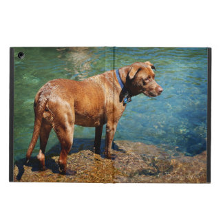 Chocolate Lab Pit Mix Dog Wading 2 Cover For iPad Air