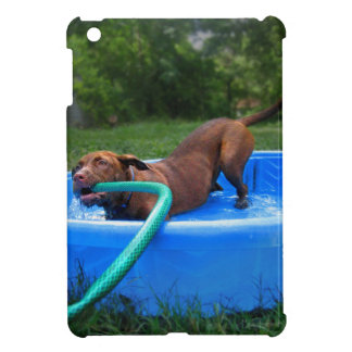 Chocolate Lab Pit Puppy in Wading Pool 2 Case For The iPad Mini
