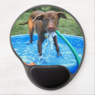 Chocolate Lab Pit Puppy Playing Gel Mouse Pad