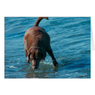Chocolate Lab playing Card