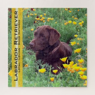 Chocolate Lab Portrait California Poppies Template Jigsaw Puzzle