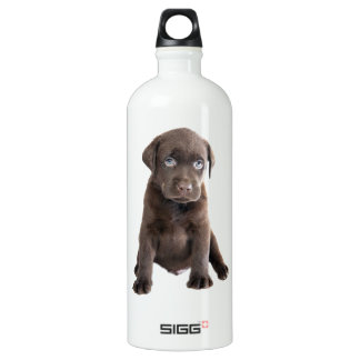 Chocolate Lab Puppy Aluminum Water Bottle