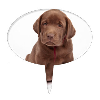 Chocolate Lab Puppy Cake Topper