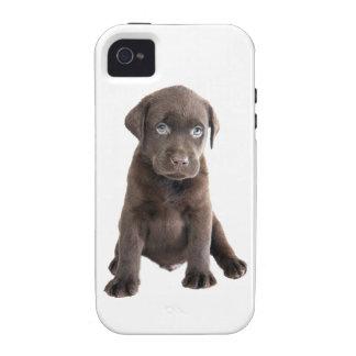 Chocolate Lab Puppy iPhone 4/4S Case