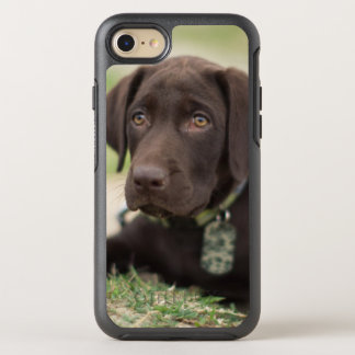 Chocolate Lab Puppy OtterBox Symmetry iPhone 7 Case