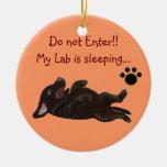 Chocolate Lab Puppy Sleeping Door Hanger Christmas Tree Ornaments