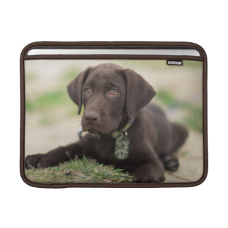 Chocolate Lab Puppy Sleeve For MacBook Air