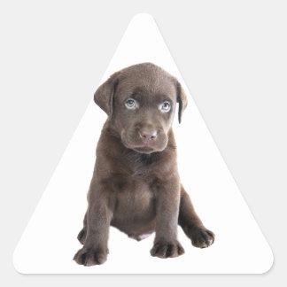 Chocolate Lab Puppy Sticker
