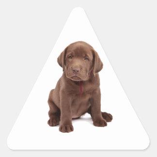 Chocolate Lab Puppy Triangle Sticker