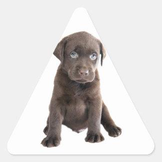 Chocolate Lab Puppy Stickers