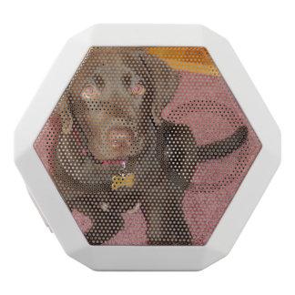 chocolate-lab-puppy white boombot rex bluetooth speaker