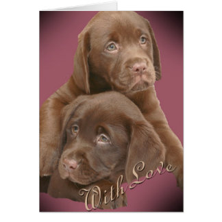 Chocolate Lab Pups With Love Cards