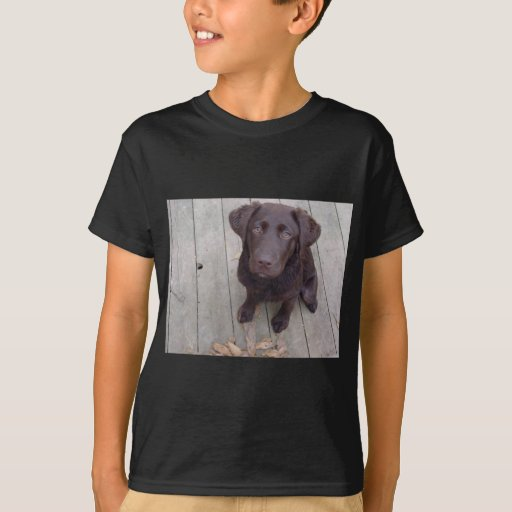 Chocolate lab t shirt zazzle for Design lab create your own shirt