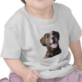 Chocolate Lab T-shirts