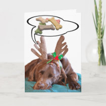Chocolate Lab With Antlers And Treat Dreams Photog Holiday Card