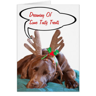 Chocolate Lab With Antlers Photograph Card