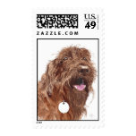 Chocolate Labradoodle #1 Stamps