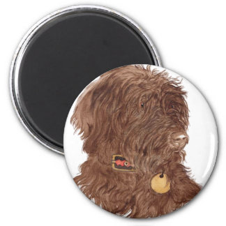 Chocolate Labradoodle Xena Magnet Magnets