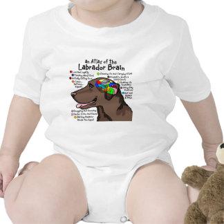 Chocolate Labrador Brain Atlas Shirts